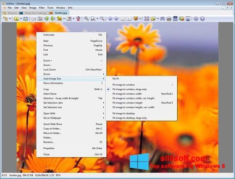 સ્ક્રીનશૉટ XnView Windows 8