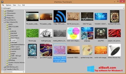 સ્ક્રીનશૉટ IrfanView Windows 8