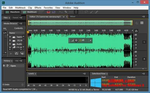 સ્ક્રીનશૉટ Adobe Audition CC Windows 8