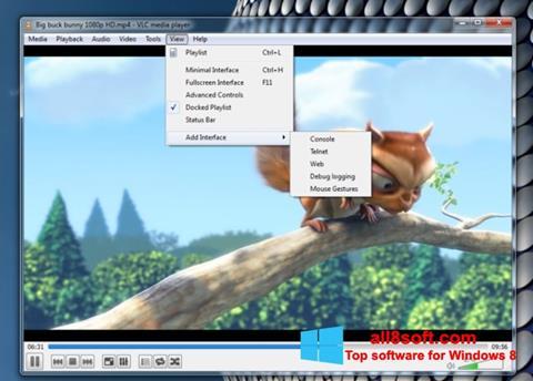 સ્ક્રીનશૉટ VLC Media Player Windows 8